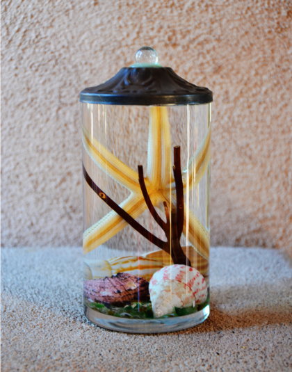 Seashell 7 5 Quot Cylinder Oil Candle Turquoise Butterfly